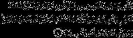 sura 65_4