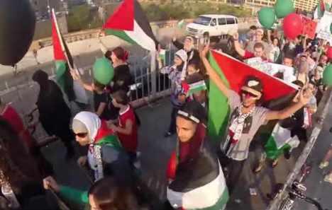 Pro-Hamas-Terrorists