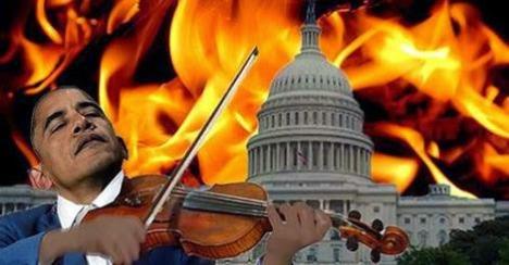bho violin